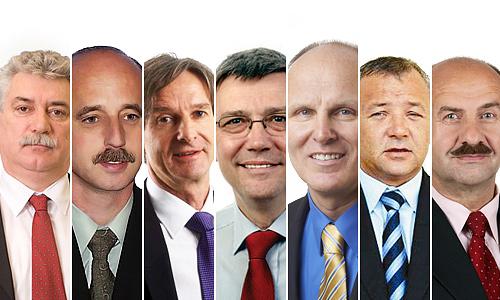 Nadomestne volitve 2012 v Slovenj Gradcu